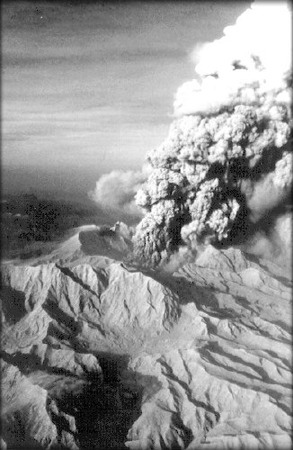 Mount st helens eruption case study
